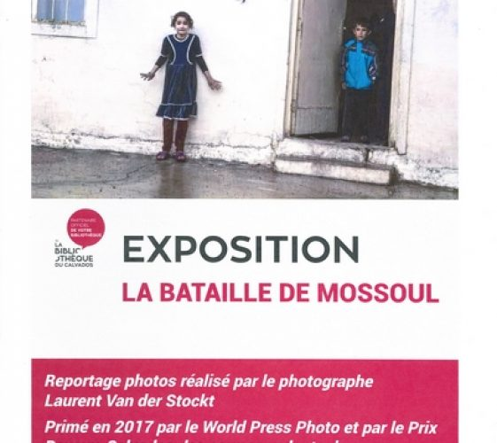 Affiche Mossoul site